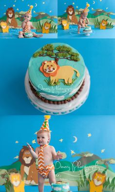 lion themed cake smash, cake smash ideas for boys, safari cake smash, first birthday photos © Dimery Photography 2013