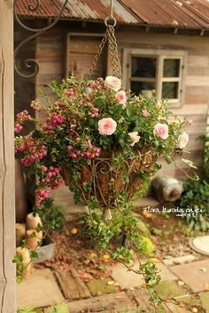Love the shed in the background.Love the shed in the background. Container Flowers, Container Plants, Container Gardening, Hanging Flower Baskets, Hanging Planters, Floating Garden, Flower Pot Design, Fall Containers, Natural Garden