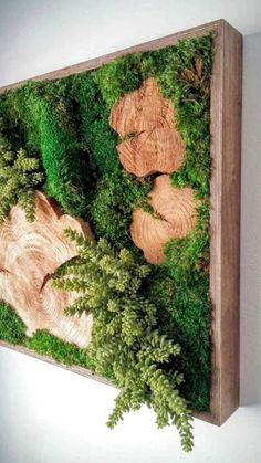 5 Exquisite Tips: Artificial Plants Indoor Bedroom artificial grass bob vila.Artificial Plants Arrangements Home. Moss Wall Art, Moss Art, Jardin Vertical Artificial, Artificial Plants, Succulent Wall Art, Succulent Frame, Succulent Arrangements, Succulents Diy, Deco Nature
