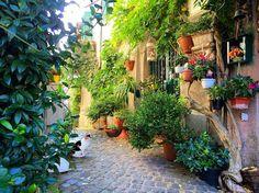 https://flic.kr/p/BHd2oY   A little bit of Italy! #upsticksandgo #formello #italy #italia #travel #travelgram #travelpics #lookingback #michfrost #exploring #village