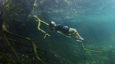 Freediver Camila Jaber conjures Sleeping Beauty and inspires the Cenote design in the Carwash cenote near Tulum, Mexico. Photo by Lia Barrett.