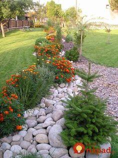 38 The Best Central Texas Landscaping Ideas For Garden Texas Landscaping, Landscaping With Rocks, Front Yard Landscaping, Backyard Landscaping, Landscaping Ideas, Amazing Gardens, Beautiful Gardens, Landscape Design, Garden Design