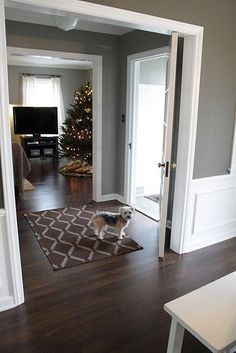 New living room grey walls wood floor colors Ideas Dark Wood Floors Living Room, White Wood Floors, Living Room White, Paint Colors For Living Room, Living Room Flooring, White Rooms, Wood Walls, Gray Walls, Living Rooms