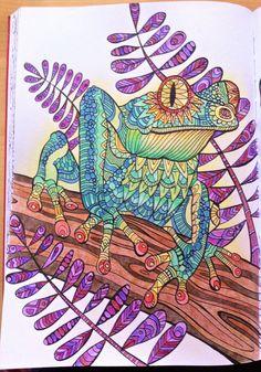 "Livre ""Bestiaire extraordinaire"" - Crayons de couleurs"
