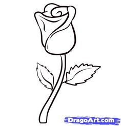 Red Rose Drawing, Simple Flower Drawing, Easy Flower Drawings, Flower Drawing Images, Simple Line Drawings, Rose Drawings, Drawing Flowers, Easy Drawings For Beginners, Easy Drawings For Kids