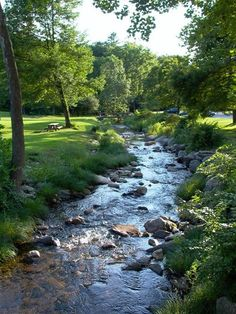 Connecticut, USA -- I grew up with a brook like this in my backyard. Beautiful World, Beautiful Places, Foto Picture, Nature Scenes, Nature Pictures, Backyard Landscaping, Backyard Stream, Amazing Nature, Beautiful Landscapes