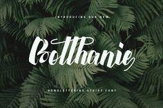 Botthanie Script V1 by Ovoz on @creativemarket