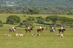 Experience the stunning scenery and vast wilderness of Kenya on horseback | Ride Kenya Safaris