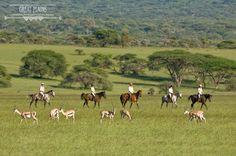 Experience the stunning scenery and vast wilderness of Kenya on horseback | Ride Kenya Safaris