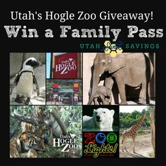 ccf4c200012 Utah Sweet Savings  Win a Hogle Zoo Family Membership! Thank You Giveaway  from UtahSweetSavings!