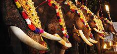Adoor Gajamela 2013, Elephant pageant Festivals, Pathanamthitta, Hindu festivals, Temple, Kerala Tourism
