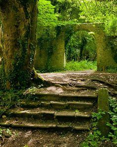 Killakee Estate Ruined Garden (Summer)