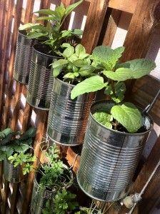 återanvänd plåtburkar. #inredning #inspiration #plåtburkar #plantering
