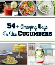 With this time of year comes a endless supply of fresh cucumbers. If you are looking for new ideas on how to use them, check out these cucumber recipes! Cucumber Dip, Cucumber Recipes, Fruit Dishes, Summer Food, Different Recipes, Summer Recipes, Reuse, Pickles, Cooking Tips
