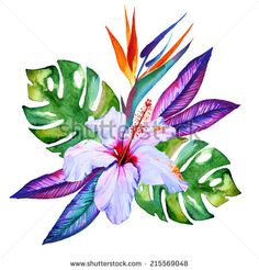 tropical flowers in watercolor, hibiscus, plumeria, monstera, palm, bird of paradise - stock photo