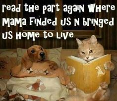 Read the part again where Mama finded us 'n bringed us Home to Live