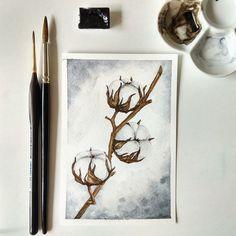 Cotton flower #watercolor #illustration #painting