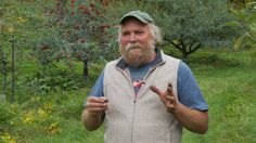 The Holistic Orchard: Growing Tree Fruit and Berries the Biological Way