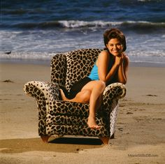 A gallery of Sunset Beach publicity stills and other photos. Featuring Susan Ward, Laura Harring, Clive Robertson, Hank Cheyne and others. Sunset Beach, Seasons, Tv, Celebrities, Opera, Feather, Soap, Twitter, Photos