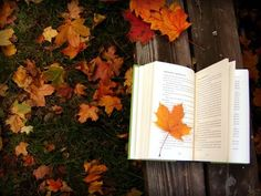 Read with the Leaves