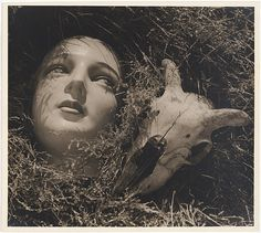 doll's head and goat's skull by max dupain, circa 1937