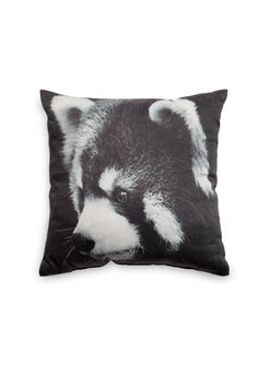 Cushion with photo print of raccoons. From H.