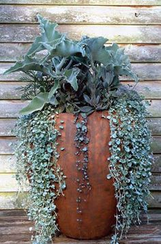 Selling your home but need to add some charm to your porch or patio.. Try adding green with potted plants. You can always take them with you and it adds so much charm to the home.