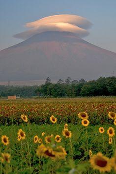 Lenticularis - Mount Fuji, Yamanashi, Japan