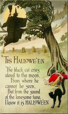 """'Tis Hallowe'en - The black cat cries aloud to the moon, From where he cannot be seen, But from the sound of the lonesome tune, I know it is HALLOWE'EN. gravesandghouls: """" Halloween postcard c. Halloween Poems, Image Halloween, Vintage Halloween Images, Halloween Greetings, Halloween Prints, Halloween Pictures, Vintage Holiday, Holidays Halloween, Spooky Halloween"""