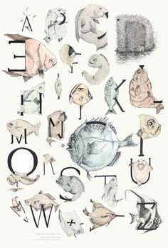 alphabet of caught fish