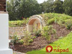 Erik sa spolu so ženou rozhodli, že začnú pestovať plodiny na vlastnej malej farme, ktorú zdedili po Erikovom dedkovi. Darilo sa im dobre a dopestované plodiny si starostlivo uchovávali, aby im vydržali čo najdlhšie. Stepping Stones, Outdoor Structures, Garden, Outdoor Decor, Ale, Future, Home Decor, Stair Risers, Garten