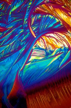 BevShots image of champagne photographed under the microscope