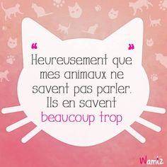 Heureusement que mes animaux ne savent pas parler. ------- Luckly my animals can't speak. They know a lot. Citations Photo, Quote Citation, Phrases, Happy Fun, Hilarious, Funny, Lyric Quotes, Animal Quotes, Some Words