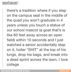 They do this at my school where if you touch the seal in the workout room you have to do ten pushups before the next workout thingy starts and so everyone just jumps over it or pushes their friends to try to touch it it's really funny Funny Shit, Haha Funny, Funny Stuff, Random Stuff, That's Hilarious, Fun Funny, Funny Tumblr Posts, My Tumblr, Funny Text Posts