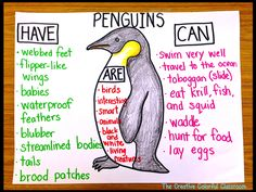 The Creative Colorful Classroom: Penguin Anchor Chart