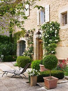 A garden patio with topiaries and rose bushes climbing trellises...lovely.