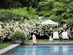 Simplicity at it's best. I love the understated rectangular pool with stairs that span the entire width not to mention the white hydrangeas and swags of green with a scale that makes you feel like Alice at her smallest.