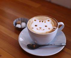 bahahahaha!  now THIS looks like a great catpucchino!