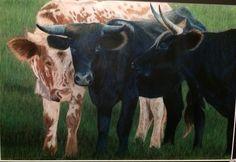 "2013 Brazoria County Fair. Prisma color. ""Three's Not A Croud"" #cattle<3"