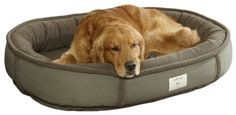 """Orvis Wraparound Dog Bed / Large Dogs 50-80 Lbs. Dogs delve right into the wraparound security this fleece bed promises, with its plush, polyester-filled bolster and the unrivaled support offered by Orvis memory foam. The 4""""-thick memory foam cushion naturally conforms to your dog's body to relieve pressure on joints while retaining an even surface that doesn't bunch up https://pets.boutiquecloset.com/product/orvis-wraparound-dog-bed-large-dogs-50-80-lbs/"""