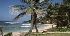"Alexandra Charles: ""Jag älskar Barbados"" | Barbados | Karibien | Resmål | Resa | Aftonbladet Barbados, Caribbean, Beach, Water, Outdoor, Pictures, Gripe Water, Outdoors, The Beach"