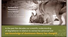 The Dominance Controversy | Philosophy | Dr. Sophia Yin, DVM, MS  - an excellent article with videos embedded, in easy to read language