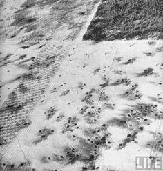 Aerial view over Ardennes showing shell bursts in the snowy plantation in a clearing of the forest near Langlir during the Battle of the Bulge.