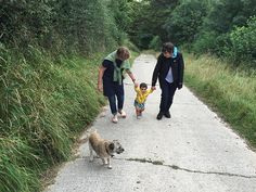 'What do you mean, 'Your legs are tired'?' This is a picture of a baby walking up the hill in the nature, with a dog and two women