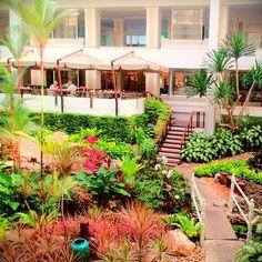 Atrium Garden at Dusit Thani Pattaya. #thailand #hotel
