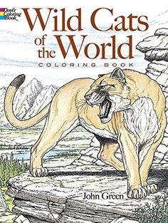 Wild Cats Of The World Coloring Book Dover Nature By John Green