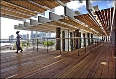 Ipe deck and Green Heart roof purlins at PAMM, Miami, FL. Credit Patrick Farrell