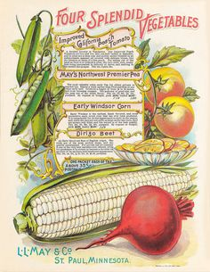 n114_w1150   May's catalogue of northern grown seeds, plants…   Flickr - Photo Sharing!