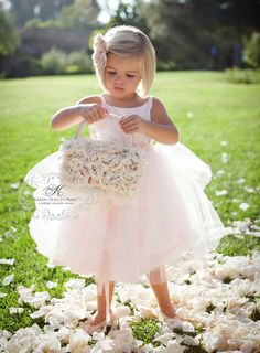Cute flower girl..100 colors of eco-friendly rose petals available at Flyboy Naturals Rose Petals. www.flyboynaturals.com.