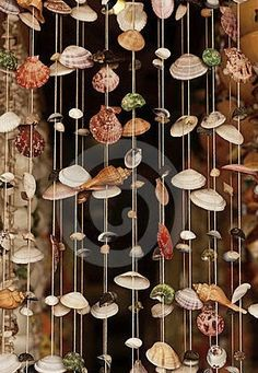 Photo about Seashell curtain at the great outdoor house decoration. Image of shell, decoration, tropical - 49239582 Seashell Art, Seashell Crafts, Beach Crafts, Diy And Crafts, String Curtains, Beaded Curtains, Diy Curtains, House Plants Decor, Cool Art Projects